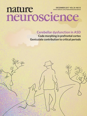 December edition of <em>Nature Neuroscience</em>