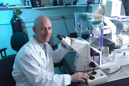 Dr. Neal Alto at the microscope in his lab