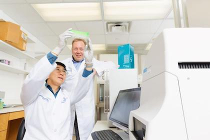 Dr. Yu A. An, first author of a new study on fat cell dysfunction, shows a seahorse plate used to measure metabolic activity in fat, to Dr. Philipp Scherer, senior author of the study.