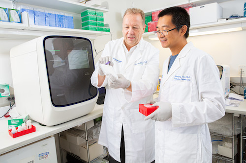 Drs. Philipp Scherer and Shangang Zhao