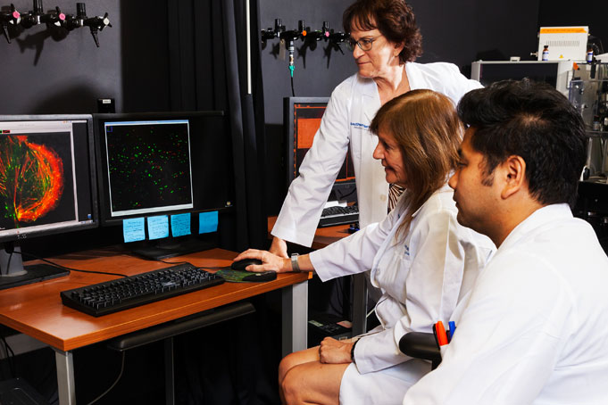 Drs. Katherine Luby-Phelps, Dorothy Mundy, and Tadamoto Isogai view super resolution image.